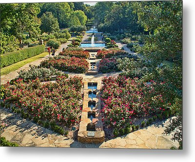 Early Morning Fort Worth Botanic Gardens Metal Print