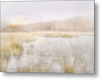 Early Morning Geese Metal Print
