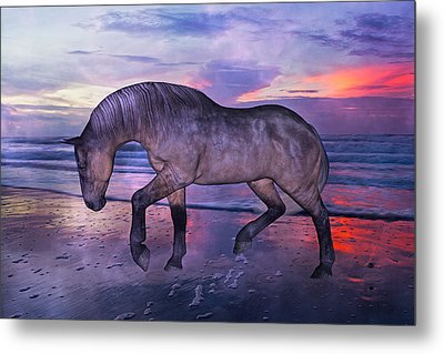 Early Morning Hours Metal Print