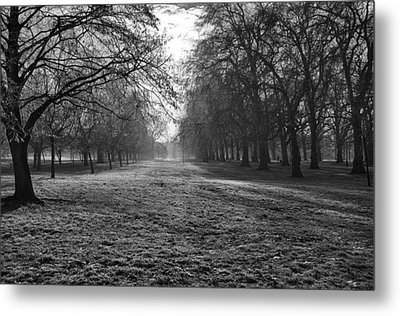 Early Morning In Hyde Park Metal Print