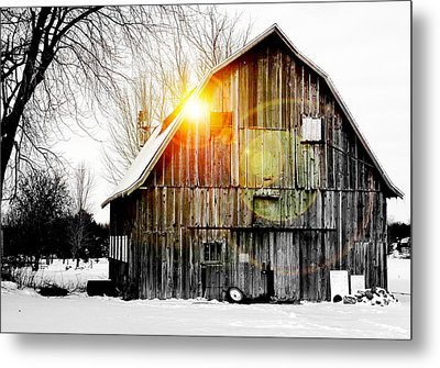 Early Morning Light Metal Print