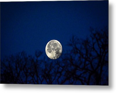 Early Morning Moon Metal Print