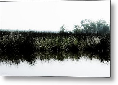 Early Morning Quiet Metal Print by Shelly Stallings