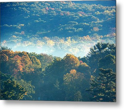 Metal Print featuring the photograph Early Morning by Steven Huszar