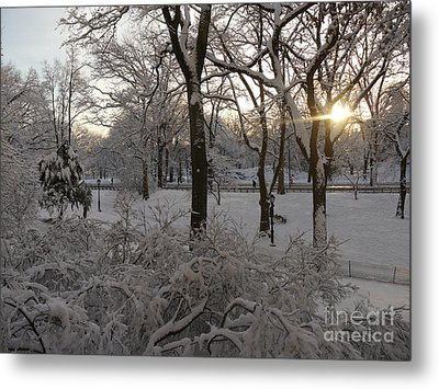 Early Morning Sun In Central Park.  Metal Print