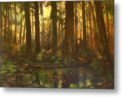 Early Morning Sun On Cannock Chase Metal Print