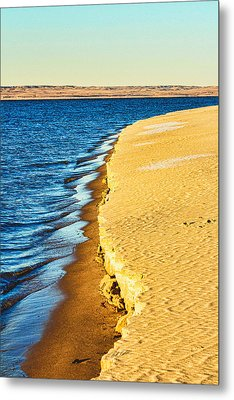 Early Morning Walk Metal Print