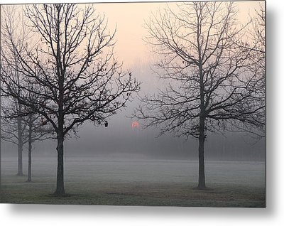Early She Rises Metal Print