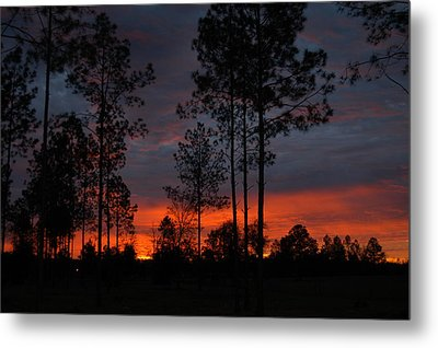 Early Sunrise Metal Print