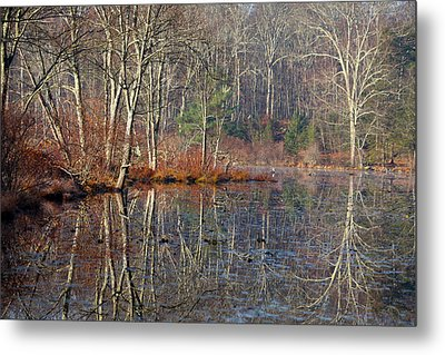 Early Winter Reflects Metal Print by Karol Livote