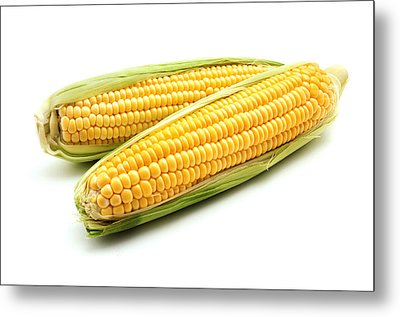 Ears Of Maize Metal Print