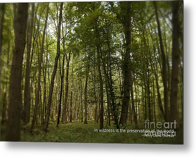 Earth Day Special - In Wildness Metal Print