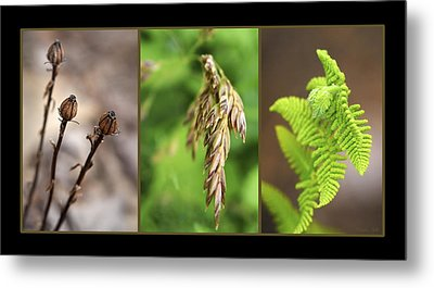 Earth Triptych Metal Print by Christina Rollo