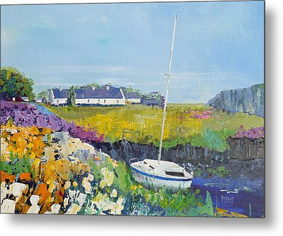 Easdale Cottages Metal Print by Peter Tarrant