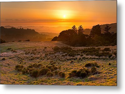 Easy Living - Russian Ridge California Metal Print by Matt Tilghman