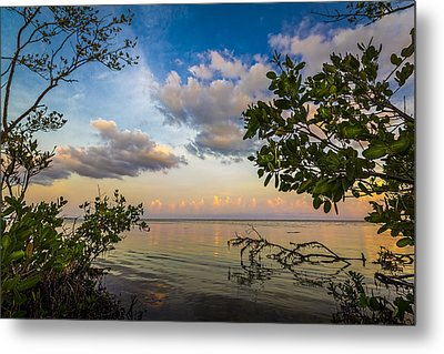 Ebb And Flow Metal Print by Marvin Spates