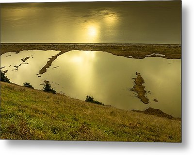 Ebey's Bluff Trail Metal Print by Calazone's Flics