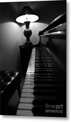 Ebony And Ivory Metal Print by Al Bourassa