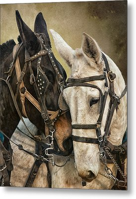 Ebony And Ivory Metal Print by Ron  McGinnis