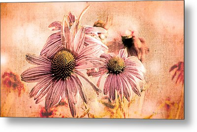 Echinacea Impressions  Metal Print by Bob Orsillo