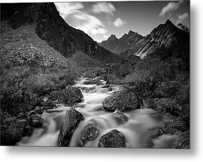 Echo Metal Print by Ed Boudreau
