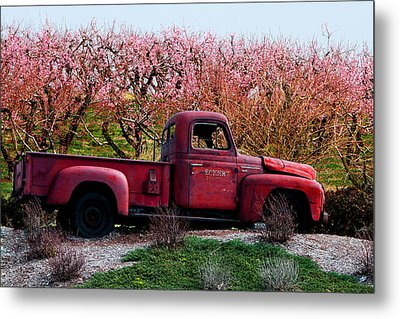 Eckert Orchards Belleville Metal Print by John Freidenberg
