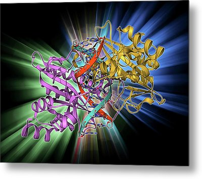 Ecorv Restriction Enzyme Molecule Metal Print by Laguna Design