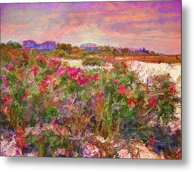 Edgartown Shoreline Roses - Horizontal  Metal Print