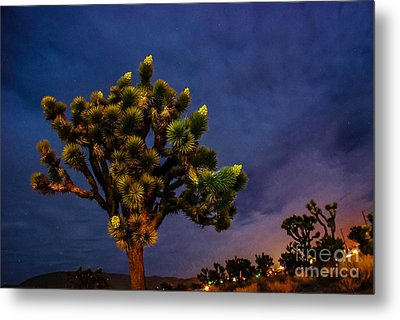 Edge Of Town Metal Print
