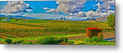 Edna Wineries Ca Metal Print