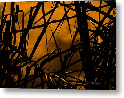 Eerie Attraction Metal Print
