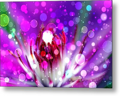 Effervescent Metal Print by Don Wright
