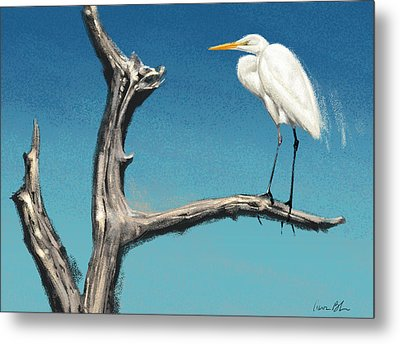 Metal Print featuring the digital art Egret by Aaron Blaise
