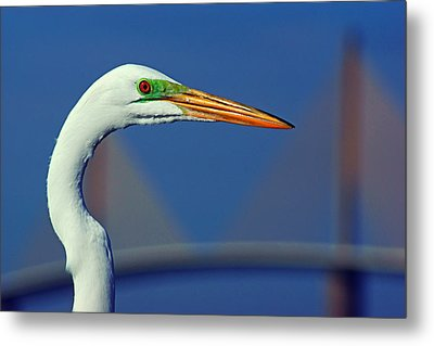 Metal Print featuring the photograph Egret And Skyway II by Daniel Woodrum