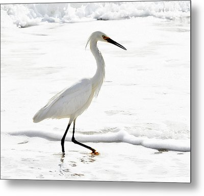 Egret Metal Print by Camille Lopez