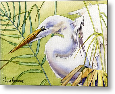 Egret Metal Print by Lyse Anthony