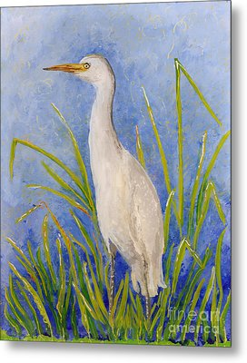 Egret Morning Metal Print
