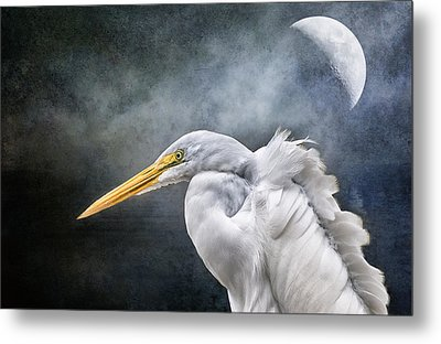 Metal Print featuring the photograph Egret's Moon by Brian Tarr