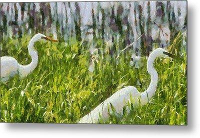 Egrets Painting Metal Print