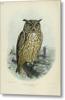 Egyption Eagle Owl Metal Print by Anton Oreshkin