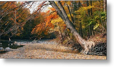 Eighteen Mile Creek Metal Print