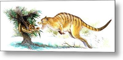Ekaltadeta Prehistoric Rat-kangaroo Metal Print by Deagostini/uig