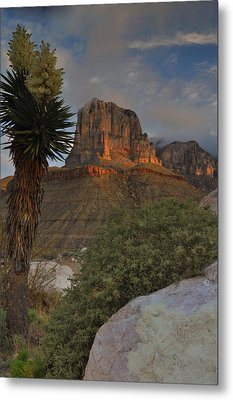El Capitan At Sunrise Metal Print by Stephen  Vecchiotti