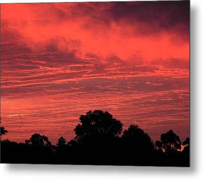 Electric Red Metal Print by Mark Blauhoefer