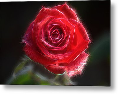 Electric Rose Metal Print by Ronald T Williams