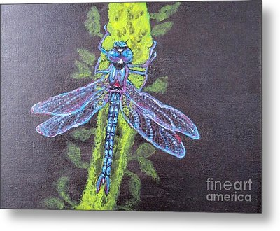 Metal Print featuring the painting Electrified Blue Dragonfly by Kimberlee Baxter