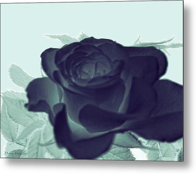 Elegant Black Rose Metal Print