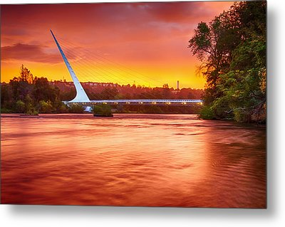 Elegant Dawn Metal Print by Randy Wood