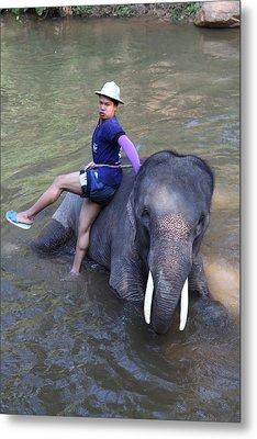 Elephant Baths - Maesa Elephant Camp - Chiang Mai Thailand - 011316 Metal Print by DC Photographer