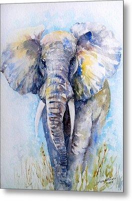 Elephant Blues Metal Print